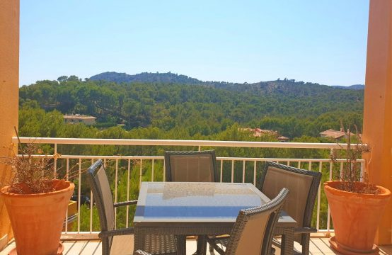 Penthouse with spacious roof terrace in Cala Fornells