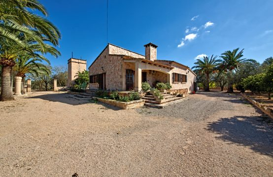 Finca with pool and olive plantation in Campos